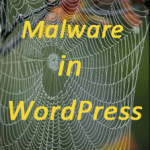 Malware WordPress website-How to remove