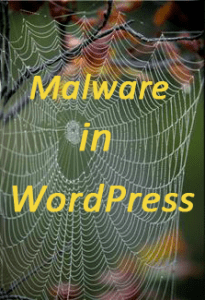 Malware in WordPress website blog security problem hack -How to remove