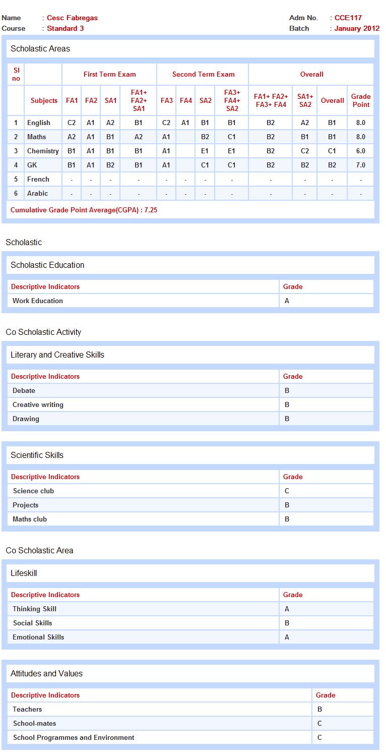 Report writing format cbse 12 : Fast Online Help : jungbrunnen-kur.de ...